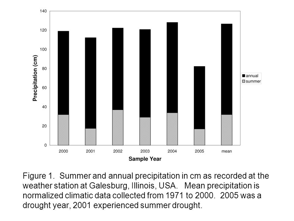 Figure 1. Summer and annual precipitation in cm as recorded at the weather station at Galesburg, Illinois, USA. Mean precipitation is normalized clima