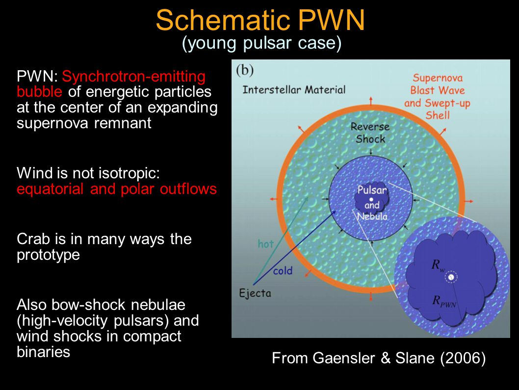 From Gaensler & Slane (2006) Schematic PWN PWN: Synchrotron-emitting bubble of energetic particles at the center of an expanding supernova remnant Wind is not isotropic: equatorial and polar outflows Crab is in many ways the prototype Also bow-shock nebulae (high-velocity pulsars) and wind shocks in compact binaries (young pulsar case)