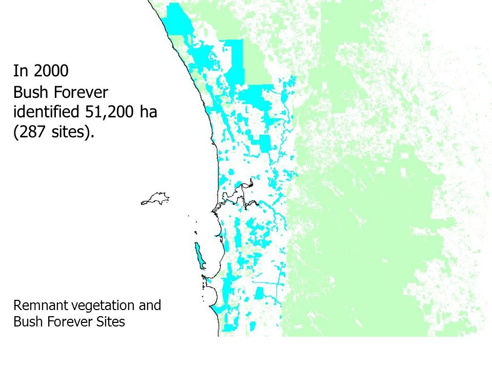 In 2000 Bush Forever identified 51,200 ha (287 sites). Remnant vegetation and Bush Forever Sites