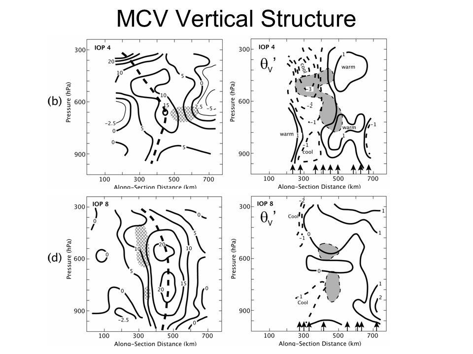 MCV Vertical Structure v'v' v'v'
