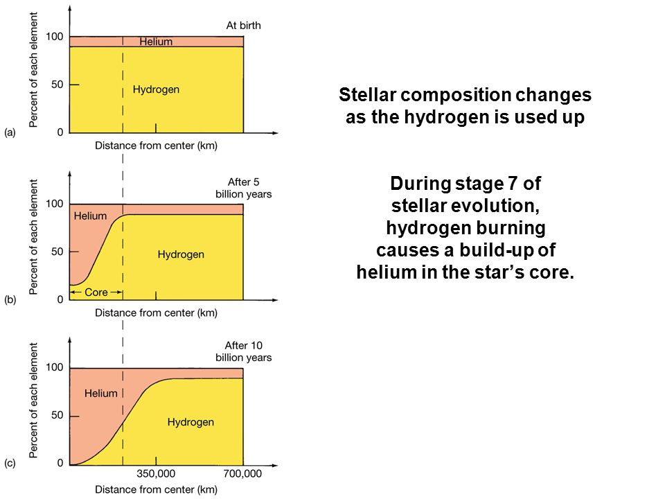 Stellar composition changes as the hydrogen is used up During stage 7 of stellar evolution, hydrogen burning causes a build-up of helium in the star's core.