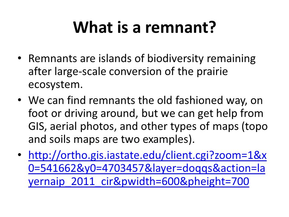 What is a remnant.