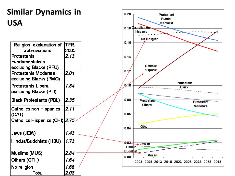 Similar Dynamics in USA