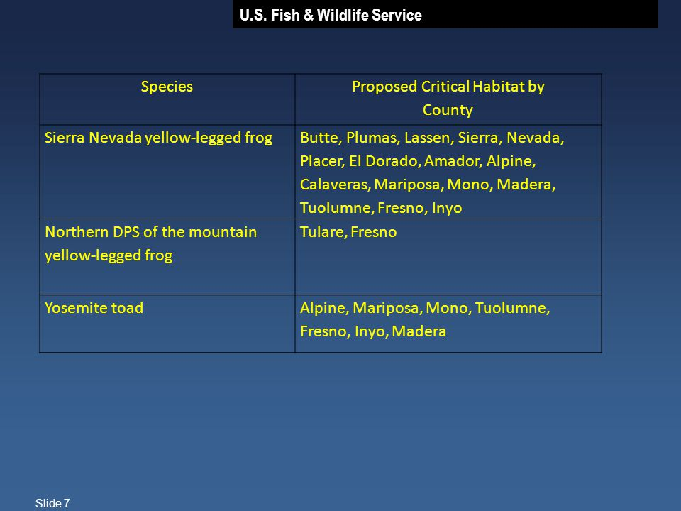 U.S. Fish & Wildlife Service Slide 7 Species Proposed Critical Habitat by County Sierra Nevada yellow-legged frogButte, Plumas, Lassen, Sierra, Nevada