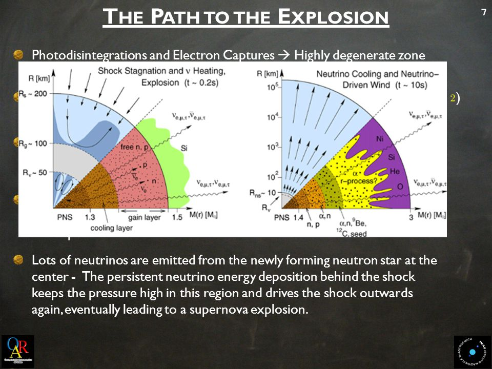7 T HE P ATH TO THE E XPLOSION Photodisintegrations and Electron Captures  Highly degenerate zone exceeds the Chandrasekhar Mass  from a fast contraction to a collapse Collpase proceeds to nuclear densities ( ) – EOS stiffens ( ) – The inner core becomes incompressible, decelerates and rebounds Prompt shock wave forms and propagates through the outer core – During this propagation it dissociates Fe nuclei into free nucleons and loses The shock consumes its entire kinetic energy still within the Fe core - It turns into an accretion shock at a radius between 100 and 200 km and the Explosion Fails Lots of neutrinos are emitted from the newly forming neutron star at the center - The persistent neutrino energy deposition behind the shock keeps the pressure high in this region and drives the shock outwards again, eventually leading to a supernova explosion.