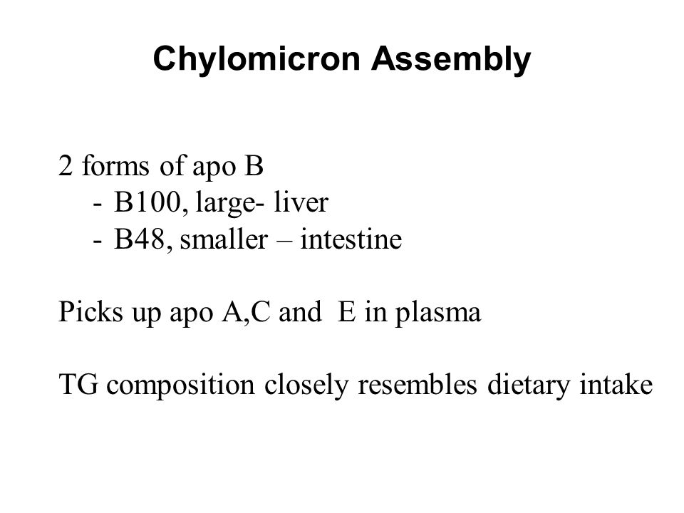 Chylomicron Assembly 2 forms of apo B -B100, large- liver -B48, smaller – intestine Picks up apo A,C and E in plasma TG composition closely resembles