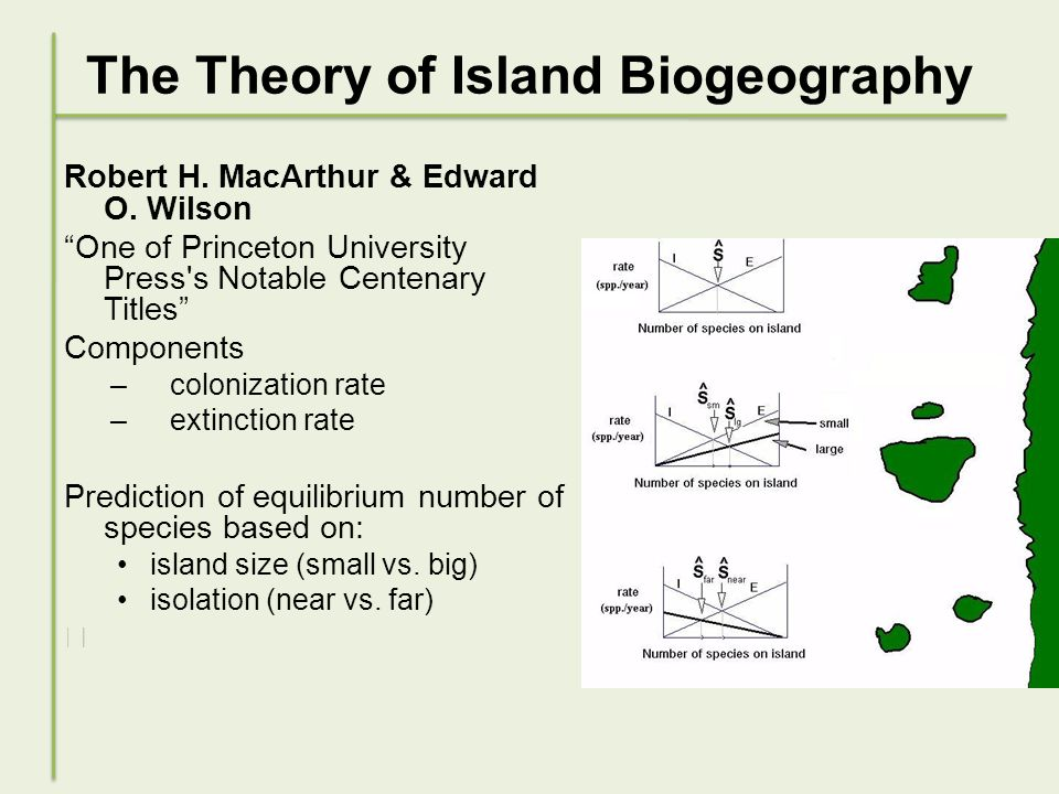 The Theory of Island Biogeography Robert H. MacArthur & Edward O.