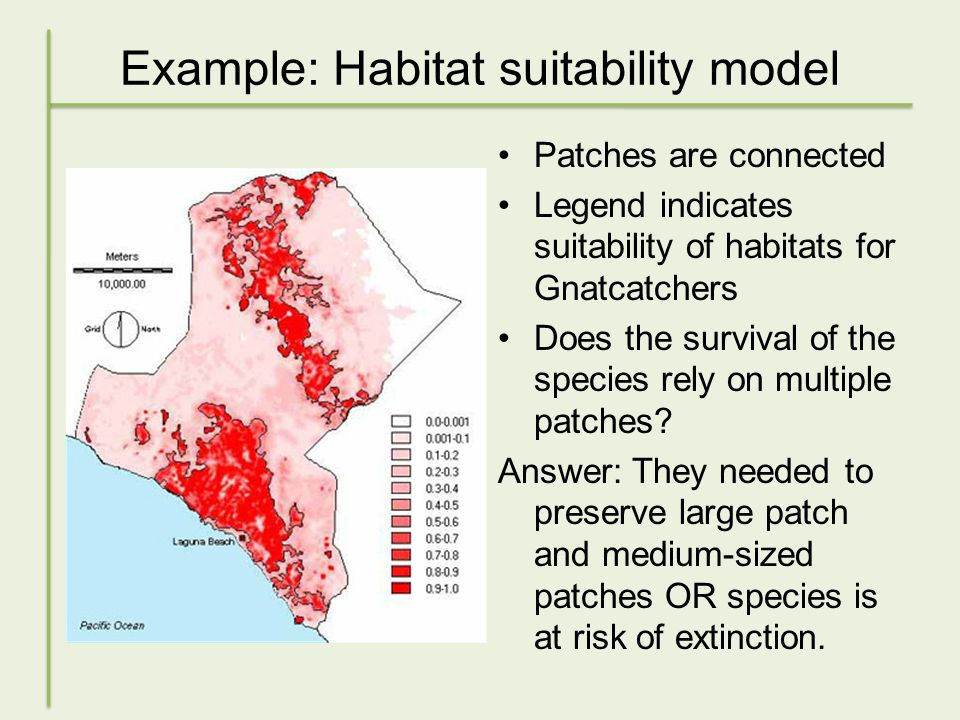 Example: Habitat suitability model Patches are connected Legend indicates suitability of habitats for Gnatcatchers Does the survival of the species rely on multiple patches.