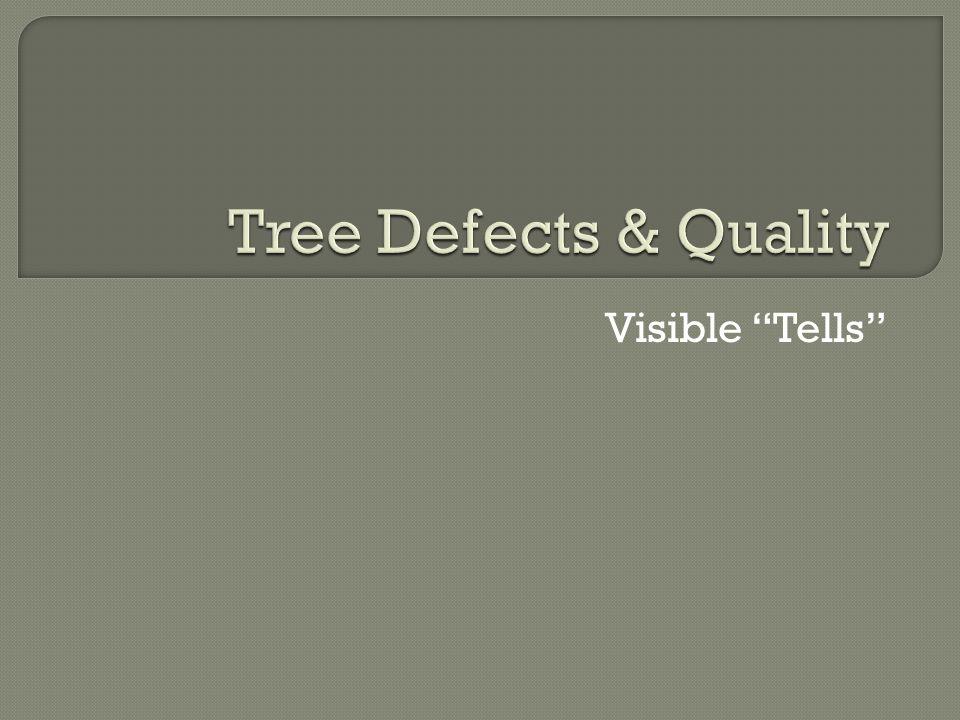 Visible Tells