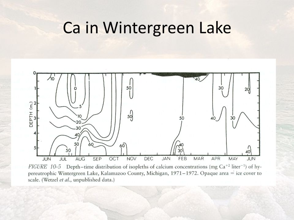 Ca in Wintergreen Lake