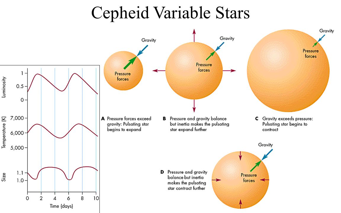 Cepheid Variable Stars Not all stars are constant luminosity There is a region of the HR diagram where stars pulsate, called the instability strip Not Main Sequence stars The temperature, size, and luminosity all vary periodically Many Cepheids are extremely bright - much more luminous than typical main sequence stars We can see them far away, even in nearby galaxies One of the biggest motivations for the Hubble telescope was to study Cepheids in galaxies a few Mpc away