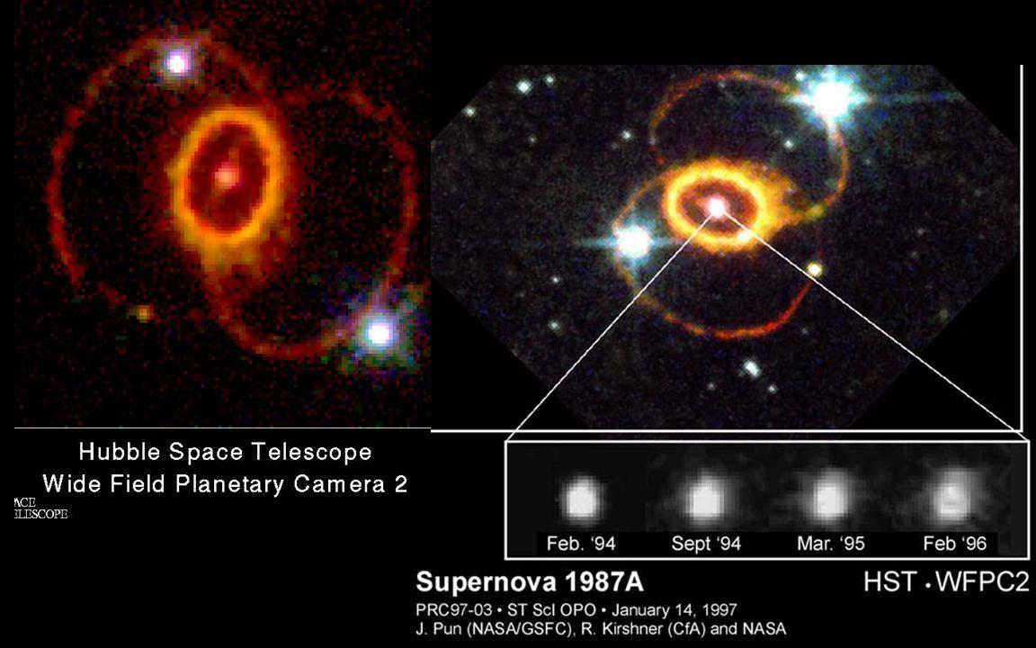 Supernovae SN1987A SN1994 D