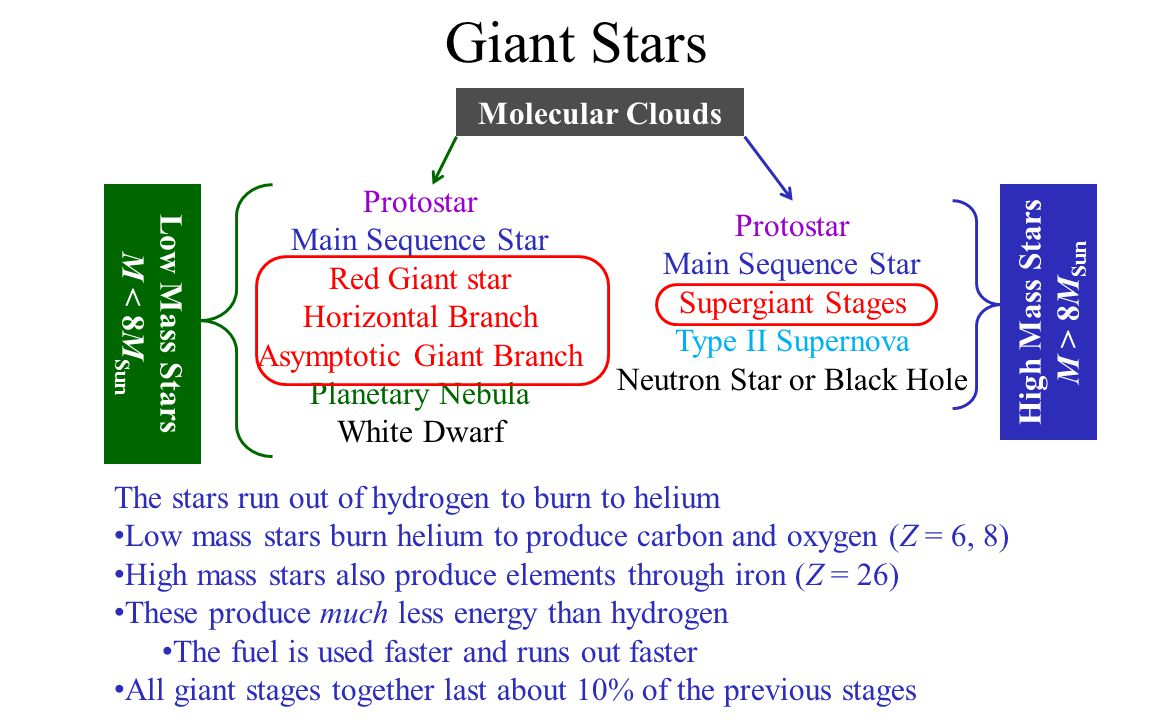 Main Sequence Stars: Lifetime A star stays as a main sequence star until it runs out of hydrogen The amount of fuel is proportional to its mass: The rate it consumes fuel depends on its mass: How long it lasts depends on mass: Big Stars Die Fast The Sun lasts about 10 Gyr on main sequence