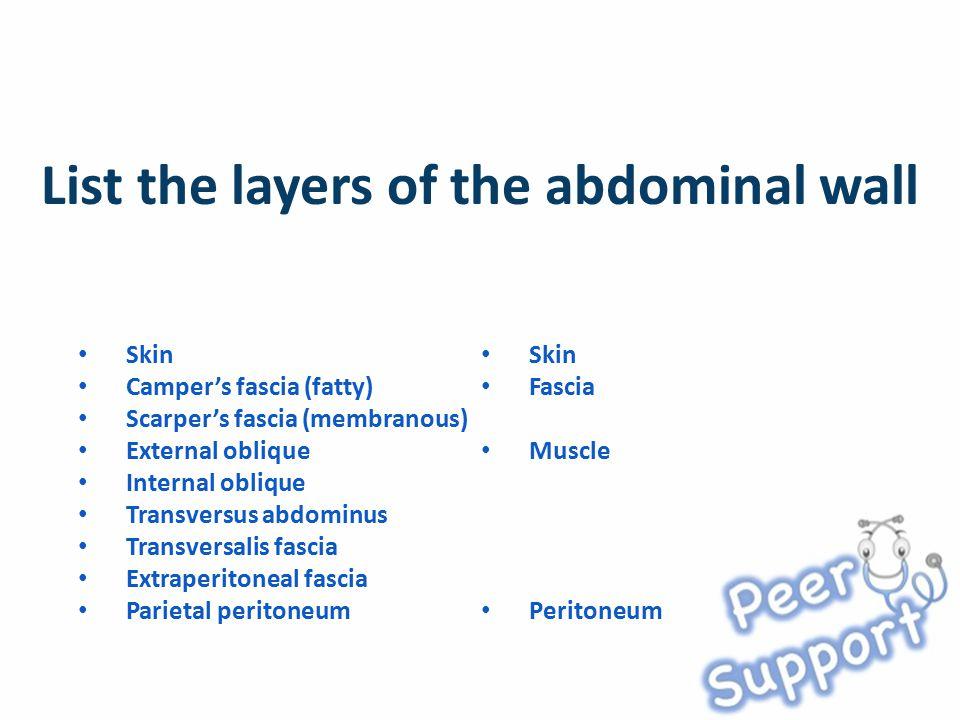 Skin Camper's fascia (fatty) Scarper's fascia (membranous) External oblique Internal oblique Transversus abdominus Transversalis fascia Extraperitoneal fascia Parietal peritoneum Skin Fascia Muscle Peritoneum