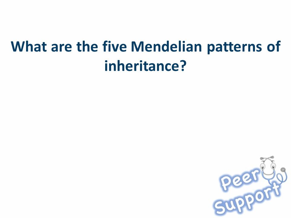 What are the five Mendelian patterns of inheritance?