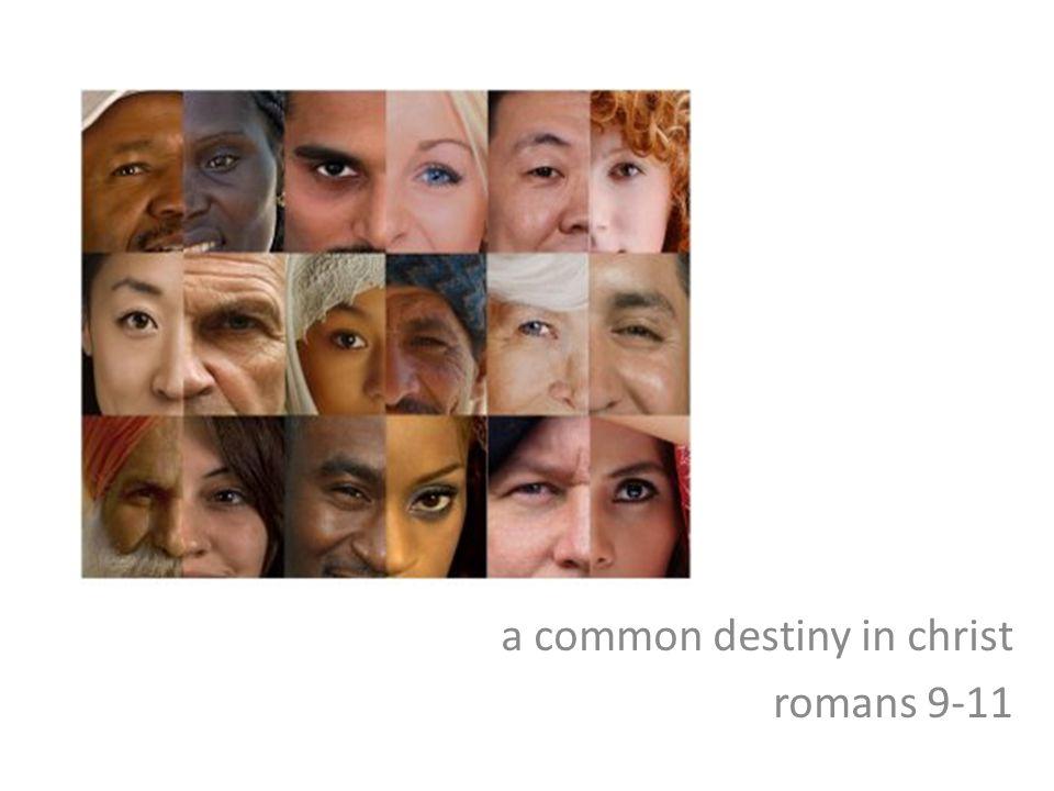 a common destiny in christ romans 9-11