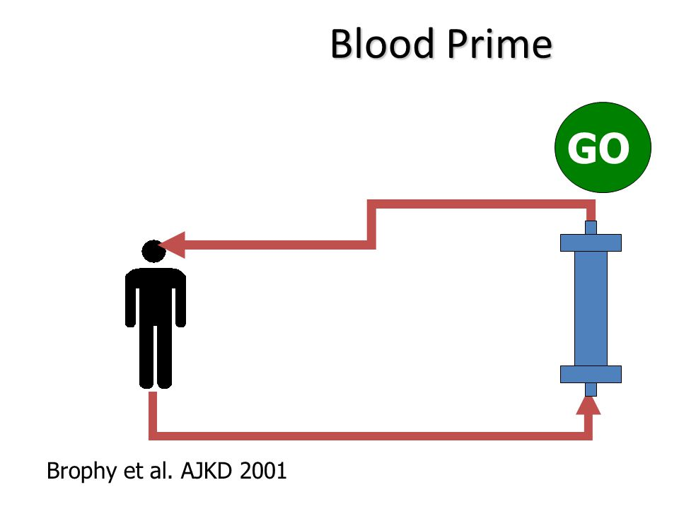Brophy et al. AJKD 2001 Blood Prime GO