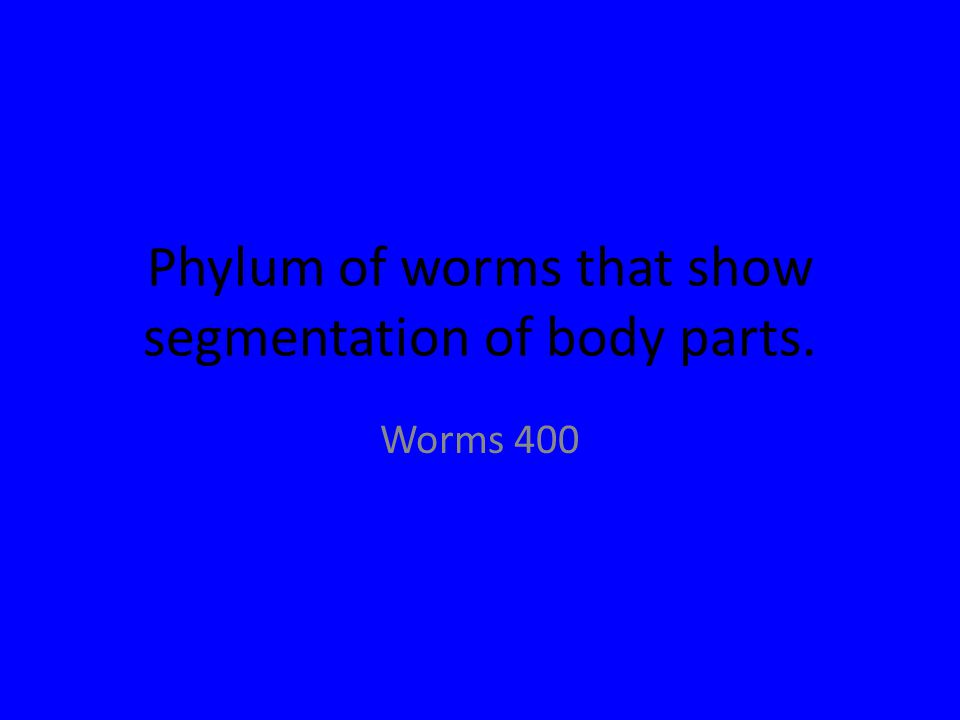 Phylum of worms that show segmentation of body parts. Worms 400