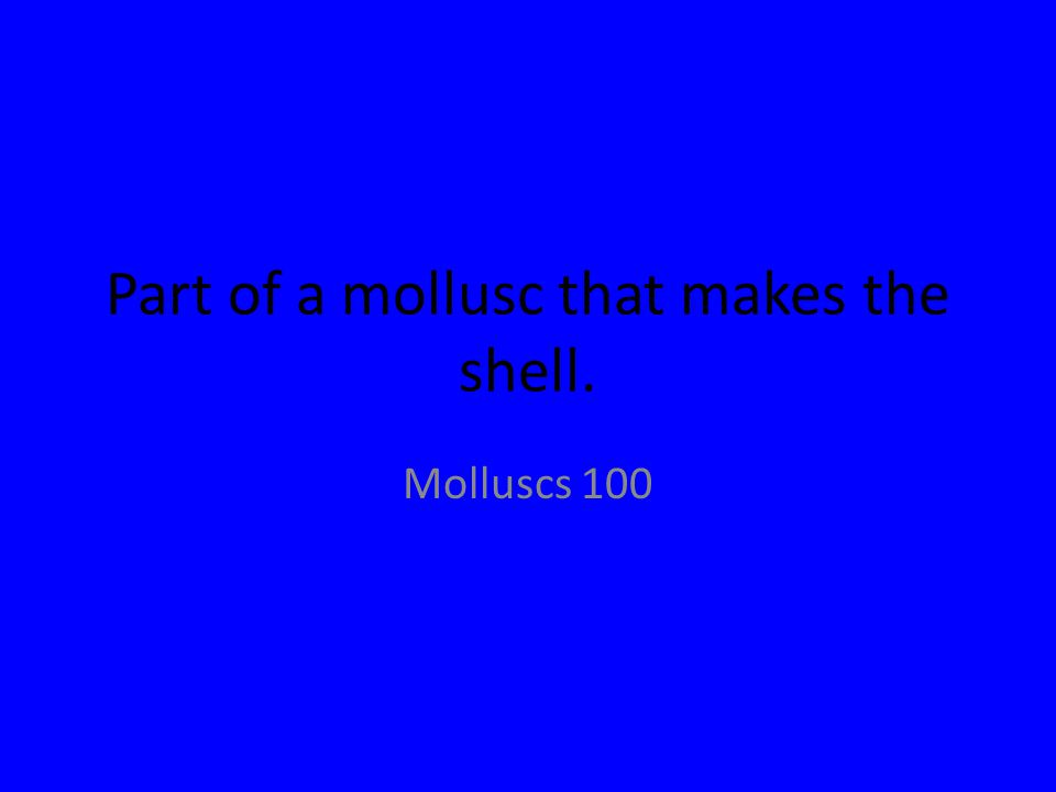 Part of a mollusc that makes the shell. Molluscs 100