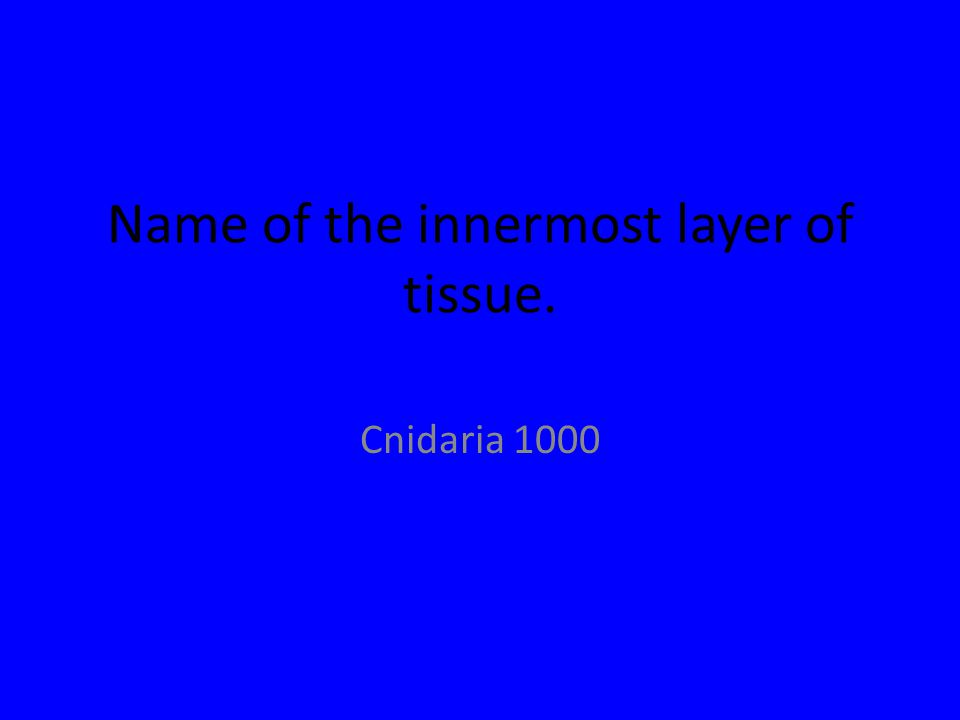 Name of the innermost layer of tissue. Cnidaria 1000