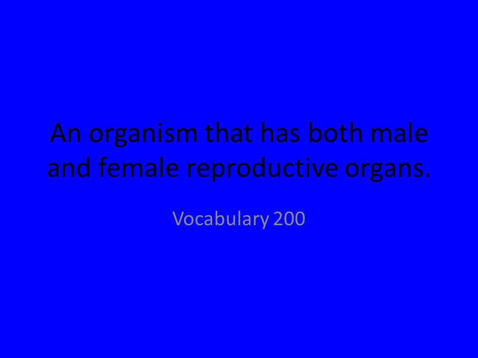 An organism that has both male and female reproductive organs. Vocabulary 200