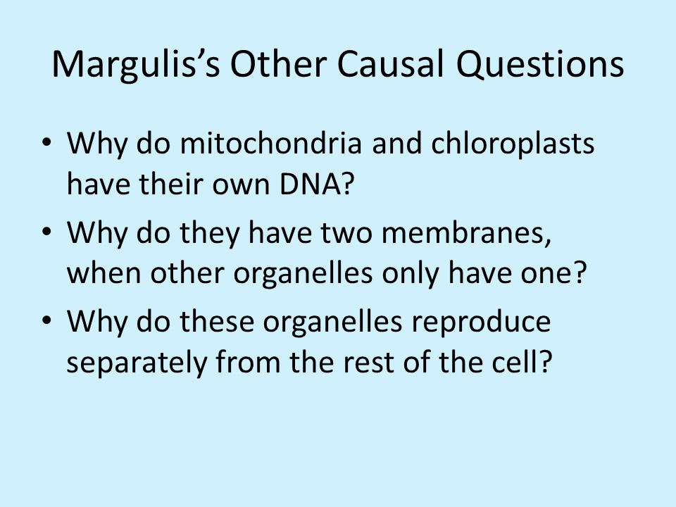 How did eukaryotes and prokaryotes come to be so different? Lynn Margulis