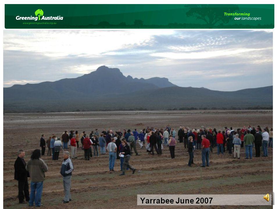 Yarrabee June 2007