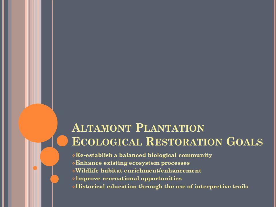 A LTAMONT P LANTATION E COLOGICAL R ESTORATION G OALS  Re-establish a balanced biological community  Enhance existing ecosystem processes  Wildlife