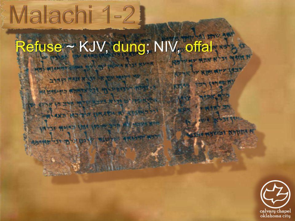 Refuse ~ KJV, dung; NIV, offal
