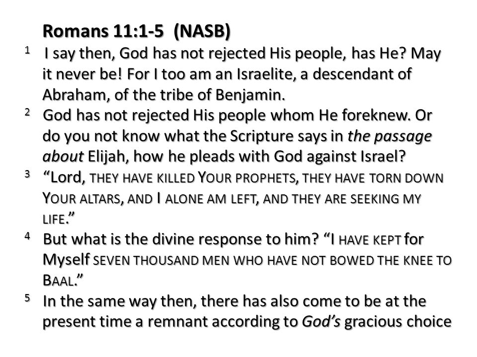 Romans 11:1-5 (NASB) 1 I say then, God has not rejected His people, has He? May it never be! For I too am an Israelite, a descendant of Abraham, of th
