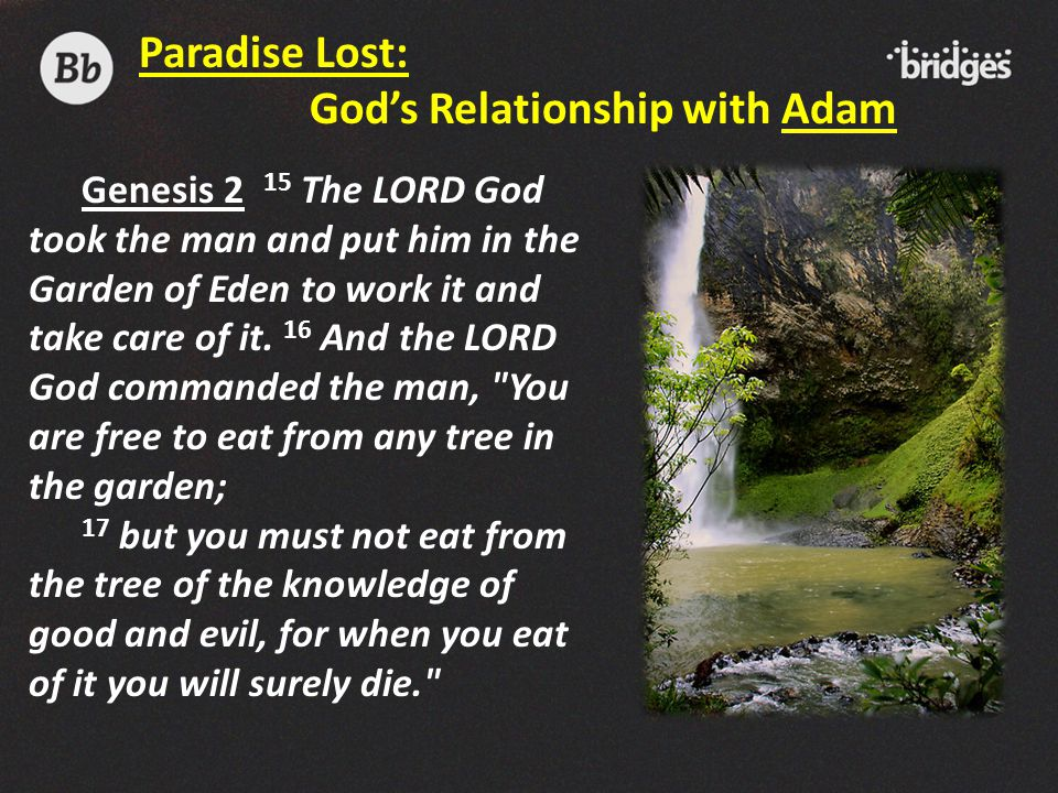 Genesis 2 15 The LORD God took the man and put him in the Garden of Eden to work it and take care of it. 16 And the LORD God commanded the man,