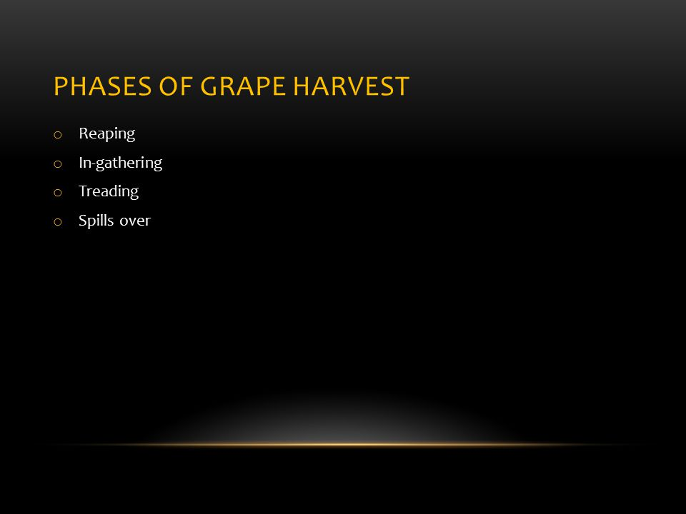 PHASES OF GRAPE HARVEST o Reaping o In-gathering o Treading o Spills over