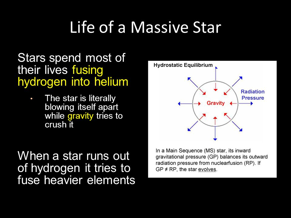Life of a Massive Star Stars spend most of their lives fusing hydrogen into helium The star is literally blowing itself apart while gravity tries to crush it When a star runs out of hydrogen it tries to fuse heavier elements