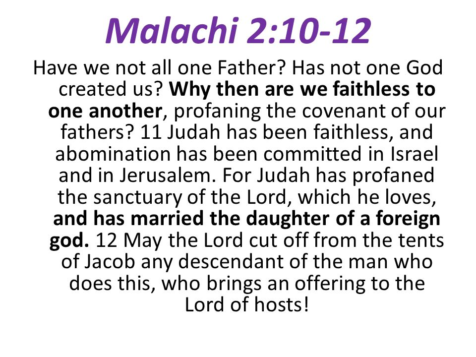 The Main Issues Both the Jews in Ethnic Judah and the Remnant in Judah (Israel)… have relational problems with one another have married non-believers