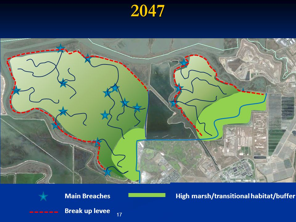 2047 Main Breaches Break up levee High marsh/transitional habitat/buffer 17
