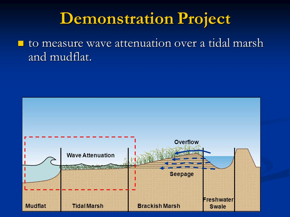 Demonstration Project to measure wave attenuation over a tidal marsh and mudflat.