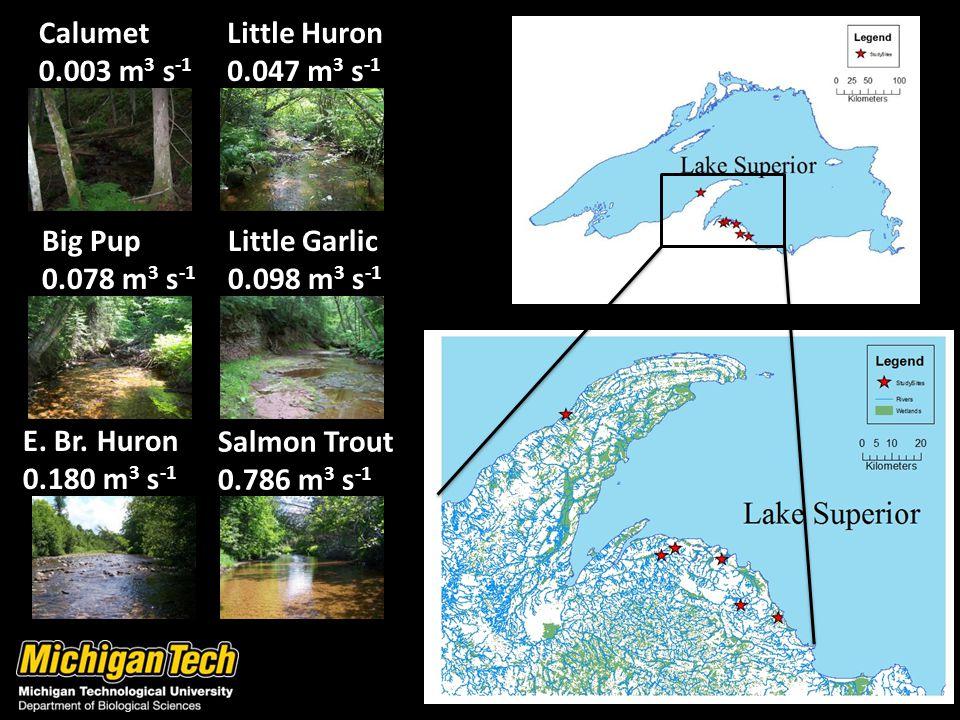 Calumet 0.003 m 3 s -1 Little Huron 0.047 m 3 s -1 Big Pup 0.078 m 3 s -1 Salmon Trout 0.786 m 3 s -1 E.