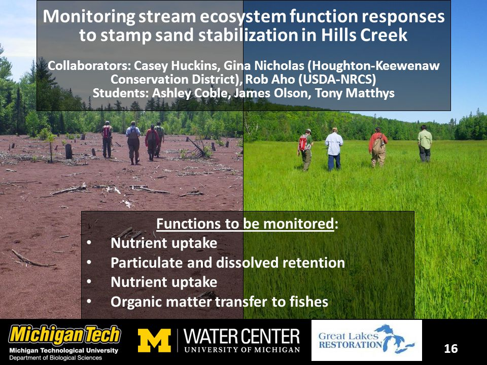 16 Monitoring stream ecosystem function responses to stamp sand stabilization in Hills Creek Collaborators: Casey Huckins, Gina Nicholas (Houghton-Keewenaw Conservation District), Rob Aho (USDA-NRCS) Students: Ashley Coble, James Olson, Tony Matthys Functions to be monitored: Nutrient uptake Particulate and dissolved retention Nutrient uptake Organic matter transfer to fishes