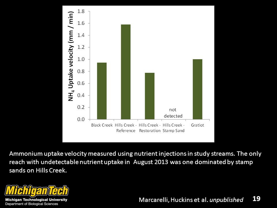 19 Ammonium uptake velocity measured using nutrient injections in study streams.