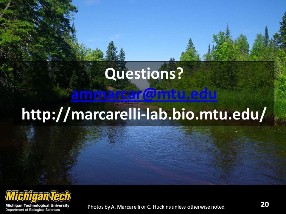 20 Questions. ammarcar@mtu.edu http://marcarelli-lab.bio.mtu.edu/ Photos by A.