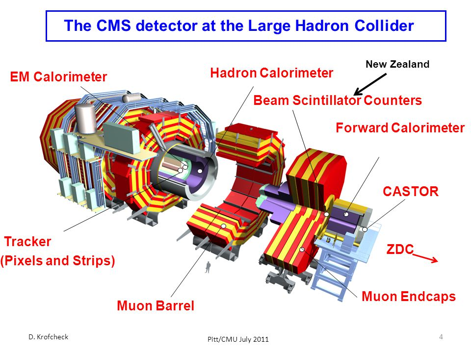 The CMS detector at the Large Hadron Collider Muon Barrel Tracker (Pixels and Strips) EM Calorimeter Hadron Calorimeter Muon Endcaps Forward Calorimeter Beam Scintillator Counters CASTOR ZDC D.