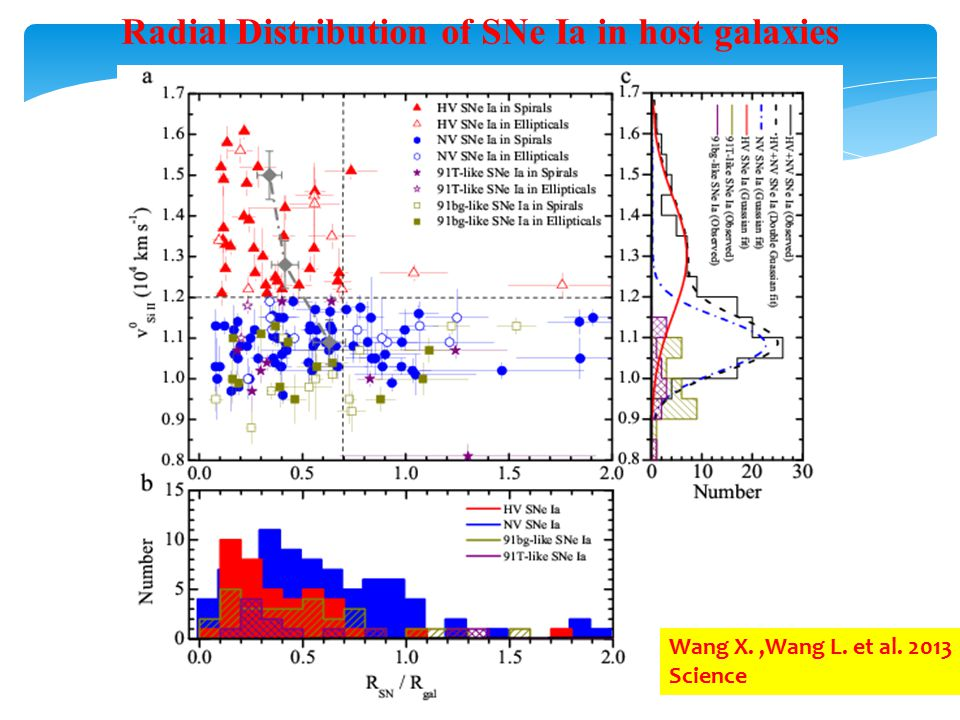 Radial Distribution of SNe Ia in host galaxies Wang X.,Wang L. et al. 2013 Science