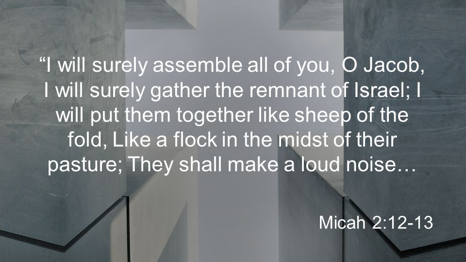 I will surely assemble all of you, O Jacob, I will surely gather the remnant of Israel; I will put them together like sheep of the fold, Like a flock in the midst of their pasture; They shall make a loud noise… Micah 2:12-13