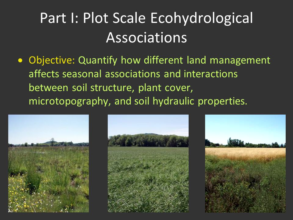 Part I: Plot Scale Ecohydrological Associations  Objective: Quantify how different land management affects seasonal associations and interactions bet