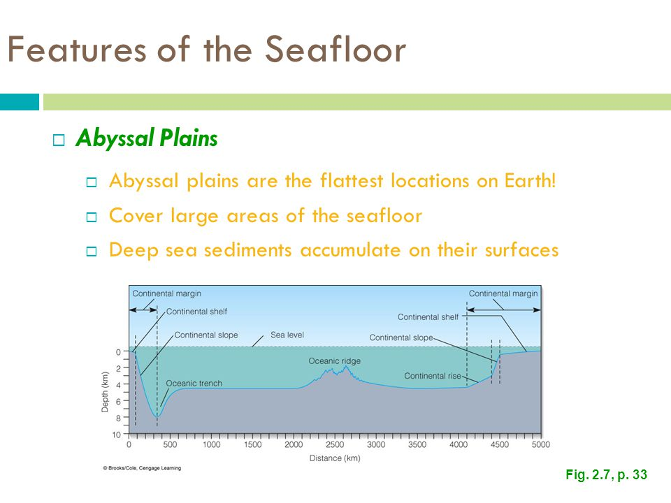 Features of the Seafloor  Abyssal Plains  Abyssal plains are the flattest locations on Earth.