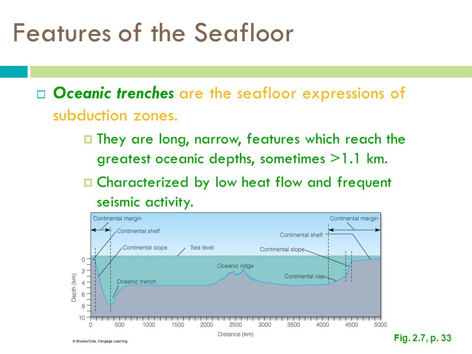 Features of the Seafloor  Oceanic trenches are the seafloor expressions of subduction zones.