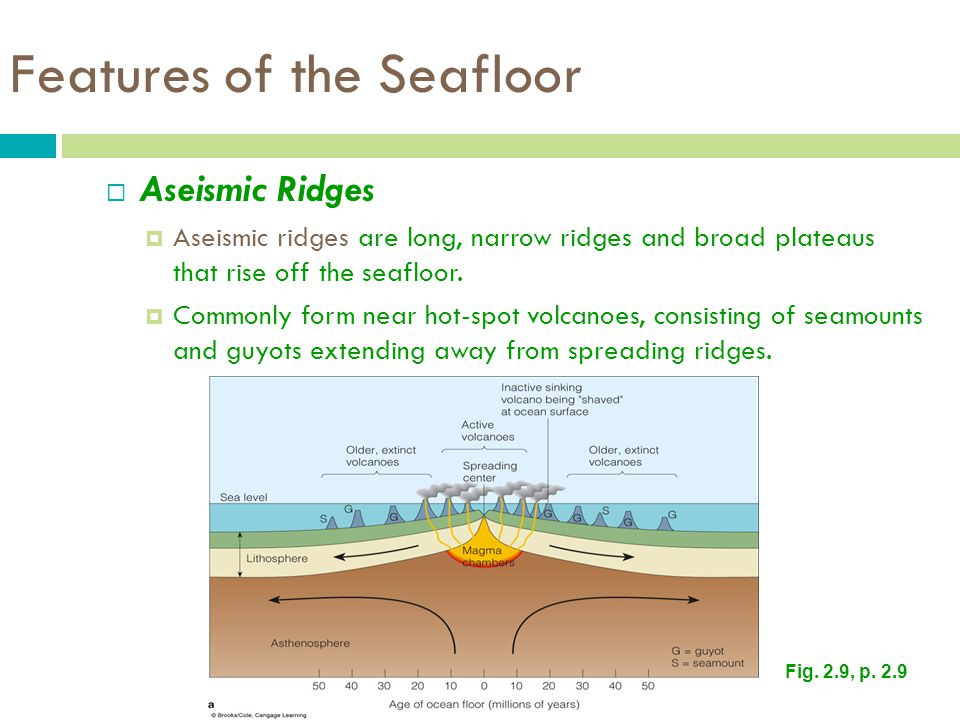 Features of the Seafloor  Aseismic Ridges  Aseismic ridges are long, narrow ridges and broad plateaus that rise off the seafloor.