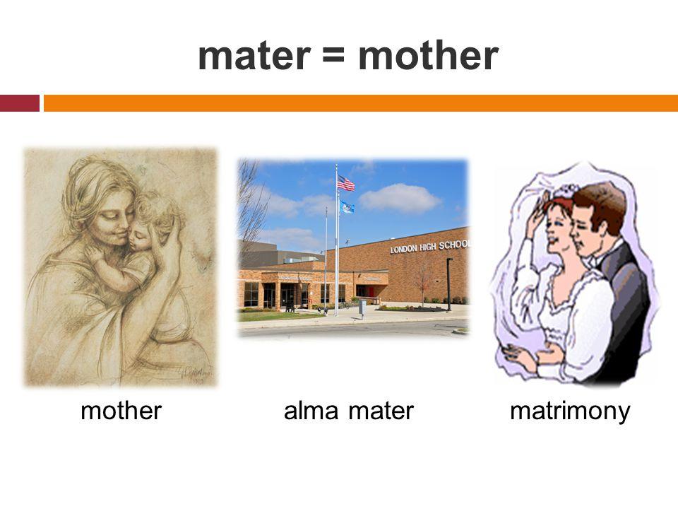 mater = mother motheralma matermatrimony