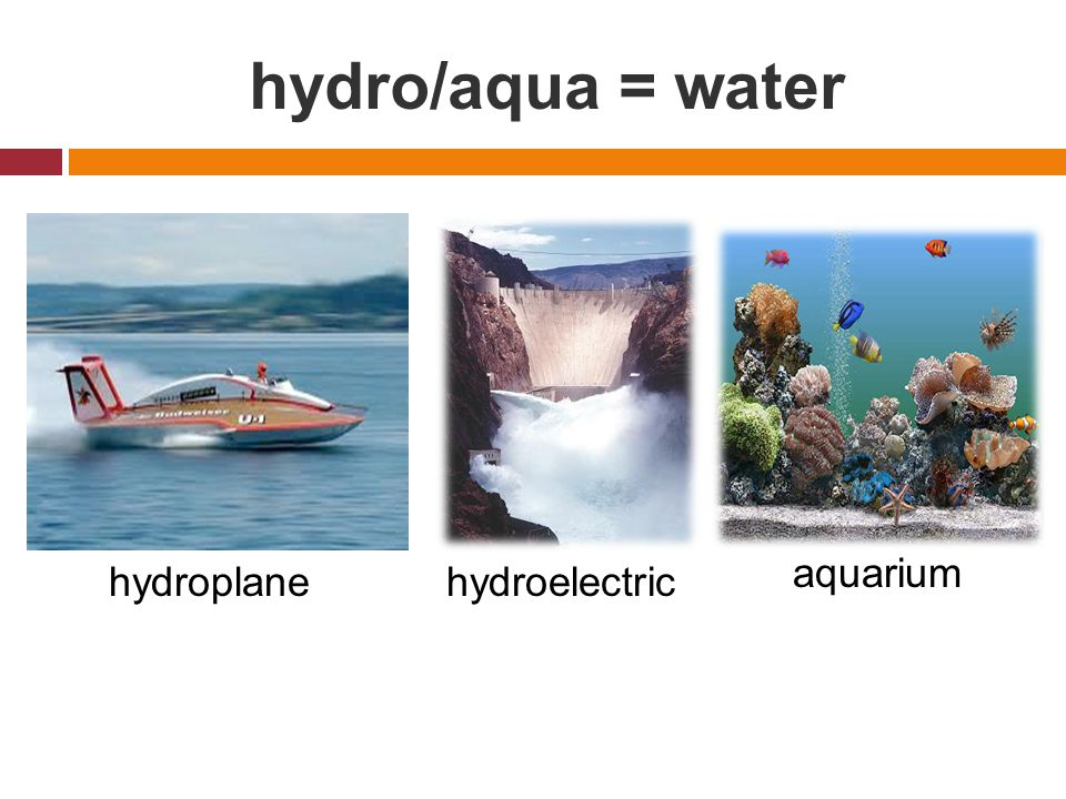 hydro/aqua = water hydroplanehydroelectric aquarium