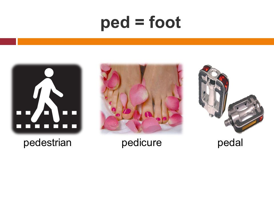 ped = foot pedestrianpedicurepedal